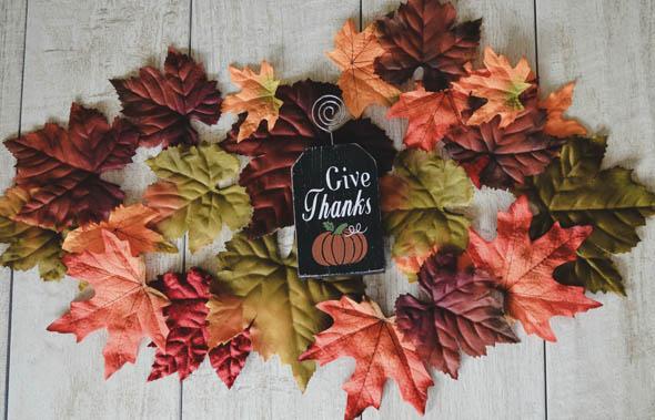 Acción de Gracias en Estados Unidos
