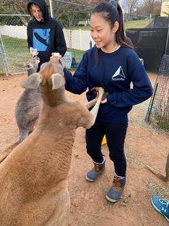 estudiante de intercambio en usa en un santuario de canguros