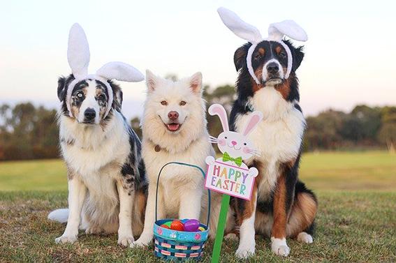 La Pascua en Estados Unidos